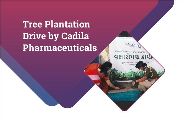 Tree Plantation Drive by Cadila Pharmaceuticals